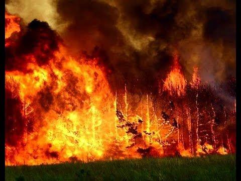 Святогорск-Яровая большой пожар охватил тереторию в несколько километров