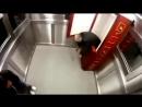 Розыгрыш с трупом в лифте на улице и заживо похороненные Пранк