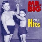 Mr. Big альбом Greatest Hits