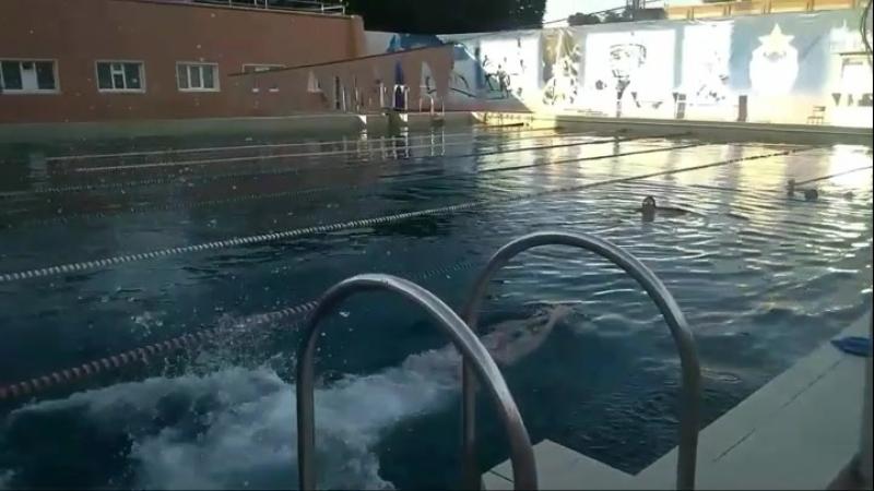 Тренировка по Плаванию. Прыжок с трамплина.