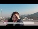 이달의소녀탐구 #334 (LOONA TV #334)