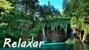 Acalmar a Mente Música Relaxante Piano e Natureza - Relaxar