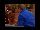 Alf Quote Season 1 Episode 25_Обними
