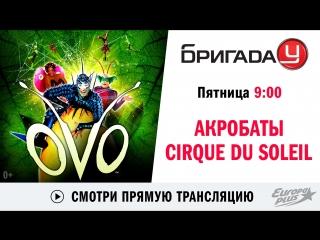 Акробаты Cirque du Soleil в Бригаде У