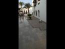 Египет, отель Шарм Плаза!