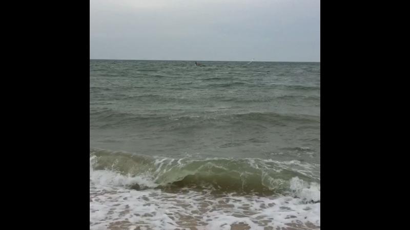 Азовское море и Таганрогский залив 2018 сентябрь