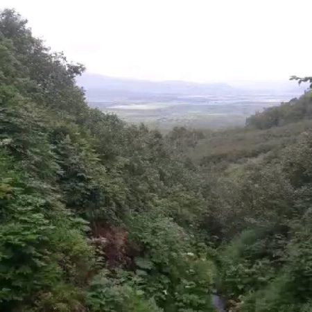 Anatoliy pastor 62 video