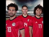 Матч №2: сборная Египта