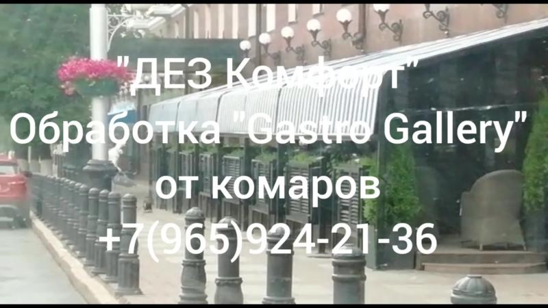 Обработка от комаров в Gastro Gallery г. Уфа