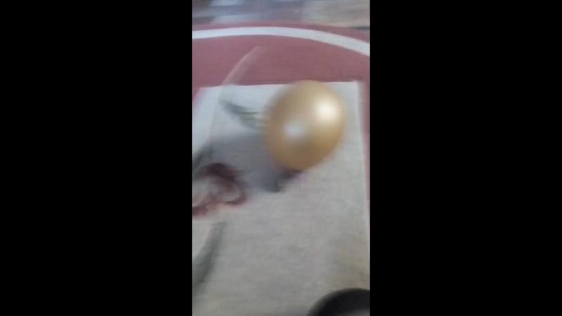 лопаем шарик