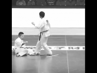 Нокаут Хидза Гаммен гери в Кёкусинкай карате. Подготовка бойца. https://vk.com/oyama_mas