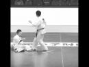 Нокаут Хидза Гаммен гери в Кёкусинкай карате. Подготовка бойца. oyama_mas