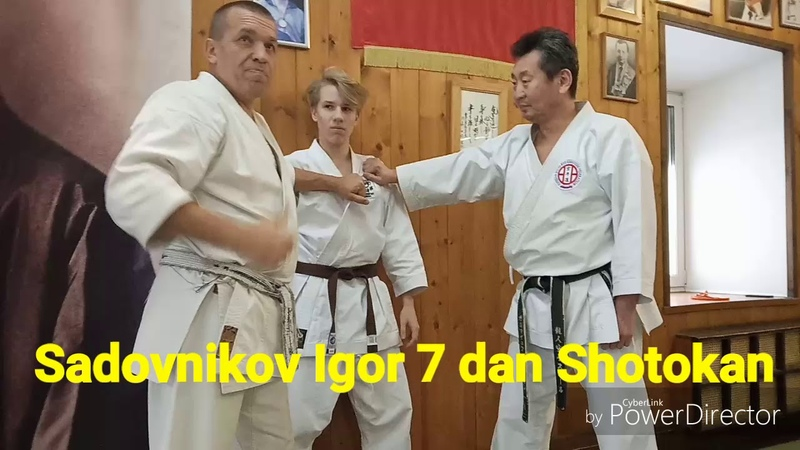 Sadovnikov Igor 7 Dan Shotokan Kase ha kata Tekki and bunkai application