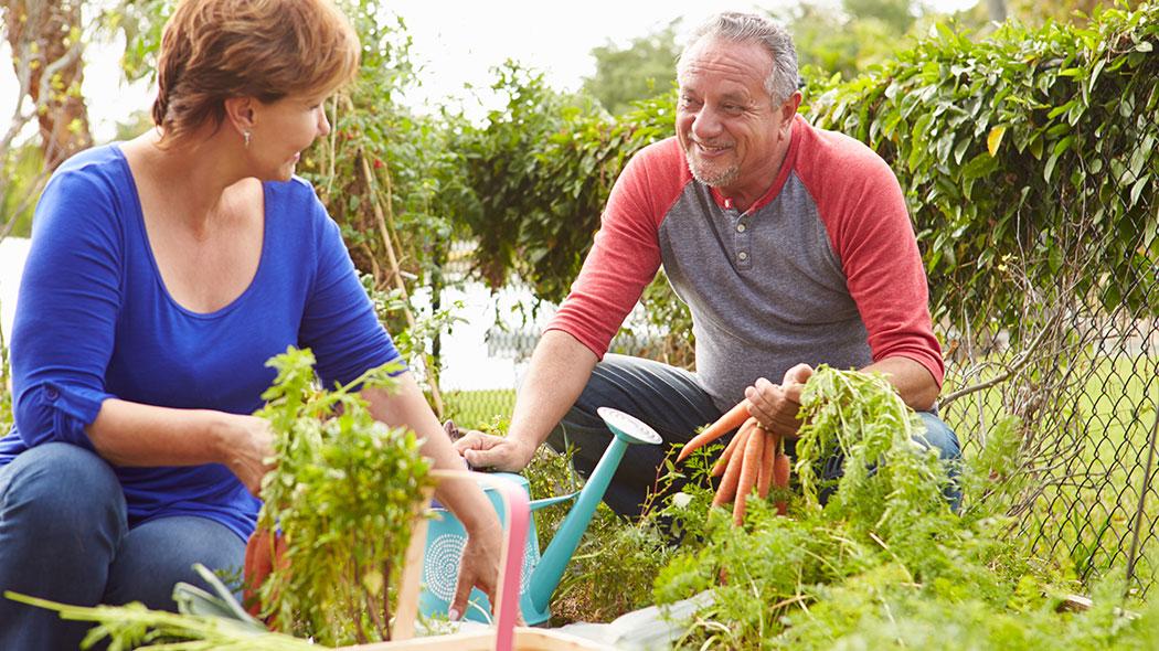 Секреты здорового старения