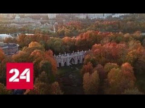Теплая аномалия такая осень бывает раз в жизни - Россия 24