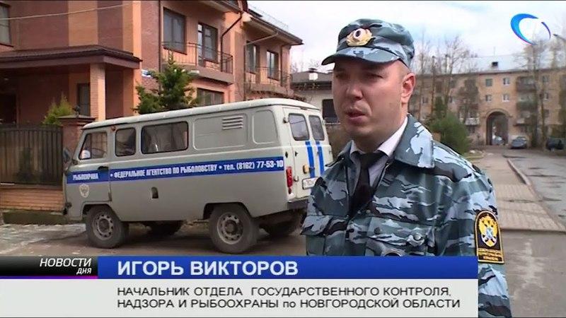В деятельности рыбодобывающего предприятия Новгородской области обнаружены серьезные нарушения