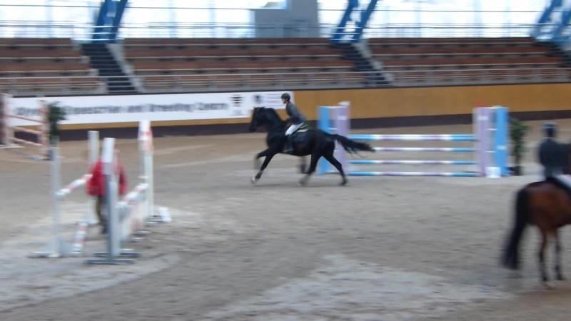 Анастасия Громыко на лошади Астерикс. Высота 110 см.