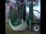 Tree re-locator