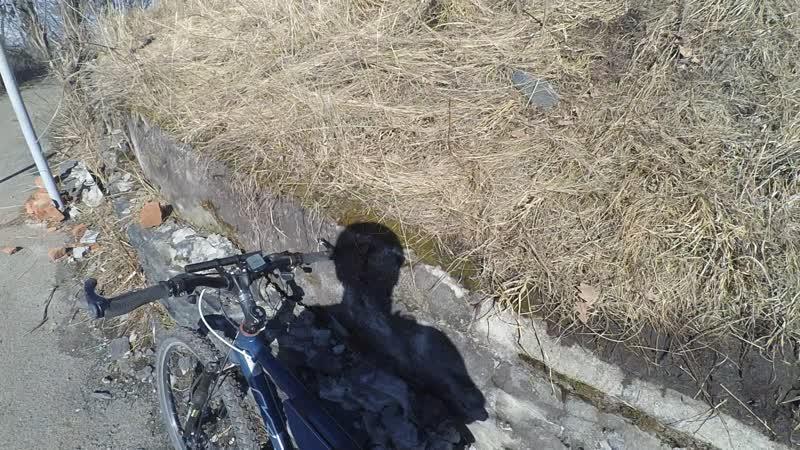 Спуск с Лысой горы Вот такой у нас февраль