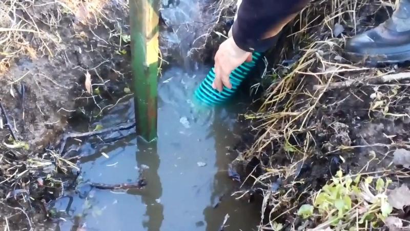 Осушение участка борьба с водой и корнями