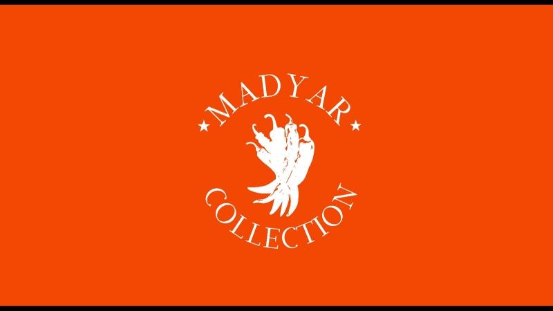 17 день рождения сети ресторанов Madyar Collection