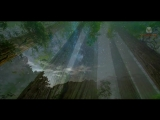 Damian Wasse - Guardian Of Nature (Original Mix) (Music Colours) _ Mix Video Edit