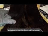 Вибро-шумоизоляция гудроном