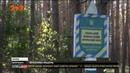 Склад артилерійських боєприпасів на Чернігівщині може стати наступною ціллю диверсантів