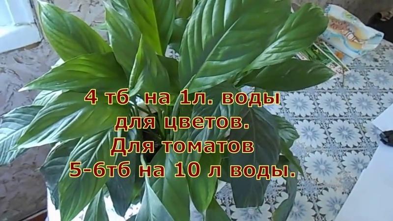 ЖИВИТЕЛЬНАЯ СИЛА для Растений Янтарная кислота