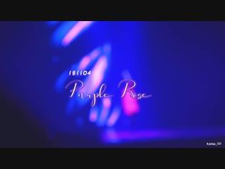 181104 jeonghan solo purple rose