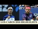 Juan Martin del Potro vs Fabio Fognini highlights LOS CABOS 2018 Final