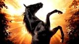 Черный красавец HD(драма, приключенческий фильм)1994 (6+)