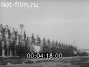 На стальных магистралях № 224 СССР 1981 год