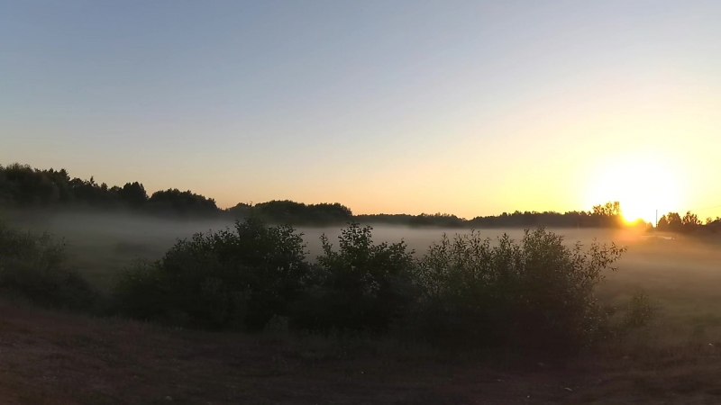 Рассвет начало лето.Брилевское поле-Веселово р.Березина