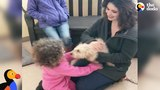 Dog Reunited with Family Gets So Happy After She Recognizes Their Scent The Dodo