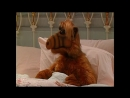 Alf Quote Season 2 Episode 9_Приключение