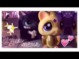 ~Lps mv Изучи меня~ (for Evelyn- and Sushi Cat)