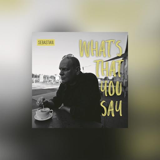 SebastiAn альбом What's That You Say