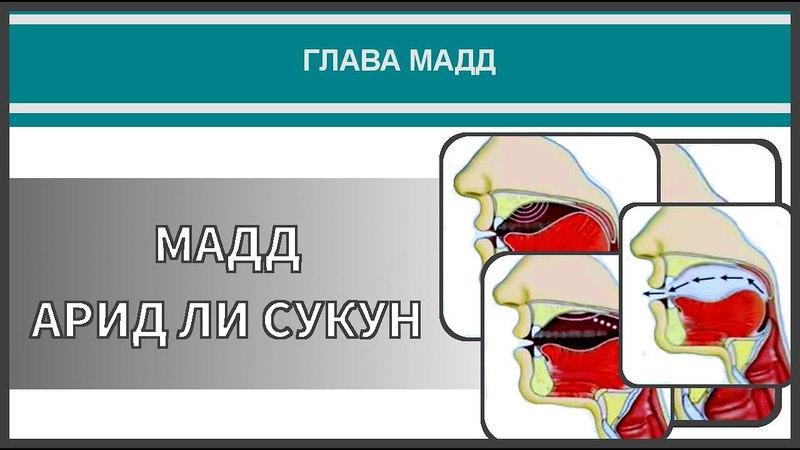 Айман Сувейд 28 Мадд арид ли сукун с субтитрами на русском