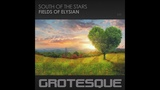 South Of The Stars - Fields Of Elysian (Extended Mix)