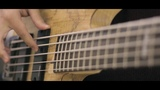 TesseracT - Survival Bass Cover