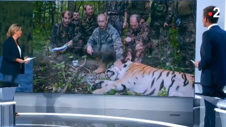 Во Франции Путина назвали охотником на тигров