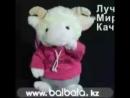 VID_21650309_004531_341.mp4