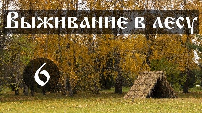 Выживание в лесу. Почему и как люди выжили и живут в Чернобыльской зоне. Часть №6