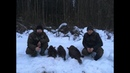 Охота на бобра весной. Добыто ТРИ бобра с БЕКАС АВТО и МР 155