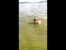 маму вывела на пляж