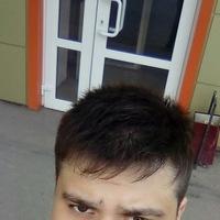 Анкета Николай Царегородский