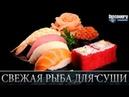 Свежая рыба для суши - Из чего это сделано .Discovery channel