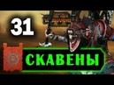 Скавены прохождение Total War Warhammer 2 за Квика 31