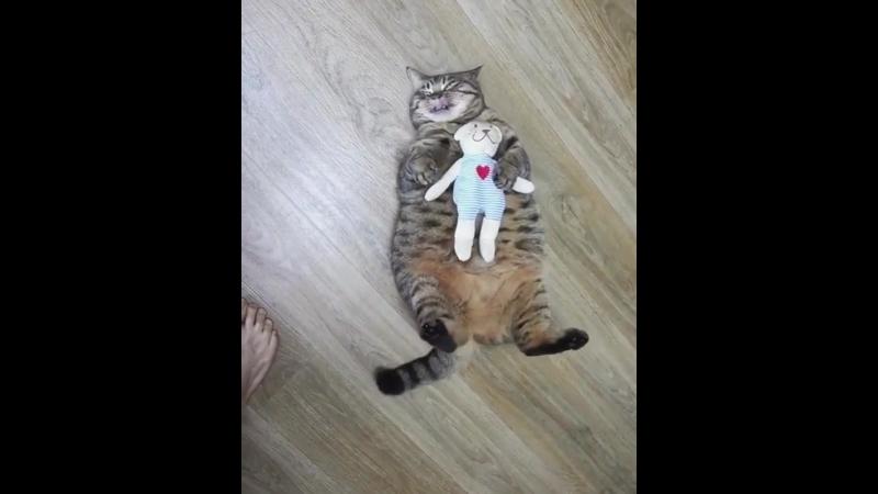 Немного фитнесса для толстячка))
